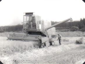 Sklizeň obilí v JZD. Milan a František Schwartzovi na kombajnu E 512.