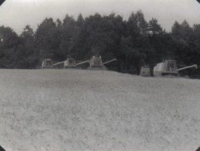 Kombajnová sklizeň obilovin.