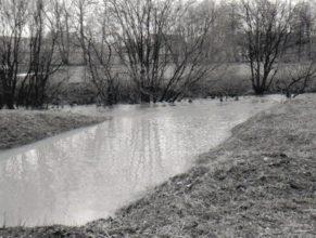 Plné rameno potoka na mostě v Dolních Vlčkovicích. V létě zde teče jen potůček vody.