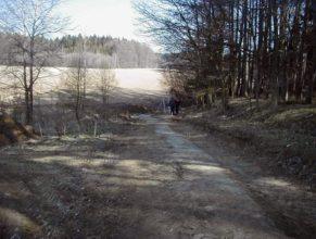 Pohled směrem na sever, na rozcestí Choustníkovo Hradiště - Kohoutov, které však na fotografií není vidět.
