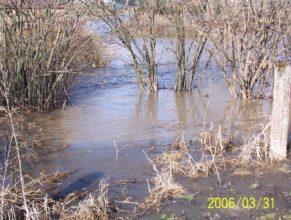 Rozvodněný potok u Řepků v Horních Vlčkovicích.