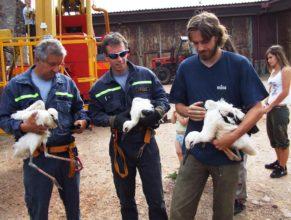 Čápi v náručí hasičů a ochránce přírody.