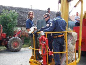 Dva hasiči a člen ochránců přírody v koši vysokozdvižné plošiny.