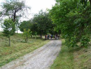 Zastávka na ovoce před osadou Růžovka.