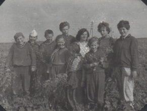 Děti pomáhají při odplevelování brambor od ohnice na honu. Vojtěch Rudolf, Hroch Antonín, Pokrupa Evžen, Škrýba Miroslav, Vondrová Marie, Vítová Jana a Květa, Jirásková, Stolínová.