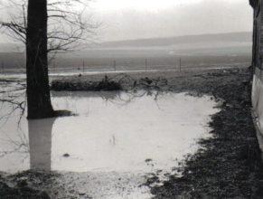 Zatopený pozemek u čp. 46 v Dolních Vlčkovicích. V pozadí proud vody se valí od lesa.