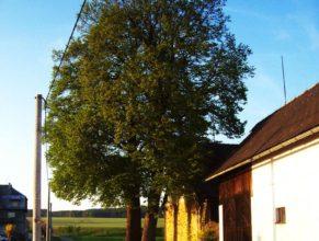 Vlevo činžovní dům.