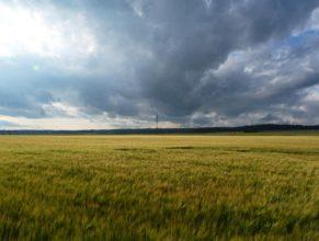 Krajina nalevo od hřbitova.