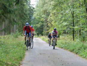 Na lesní asfaltové cestě z obce Choustníkovo Hradiště - Ferdinandov do obce Kohoutov - Rábiš.