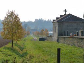 Vysazené lípy u hřbitova.